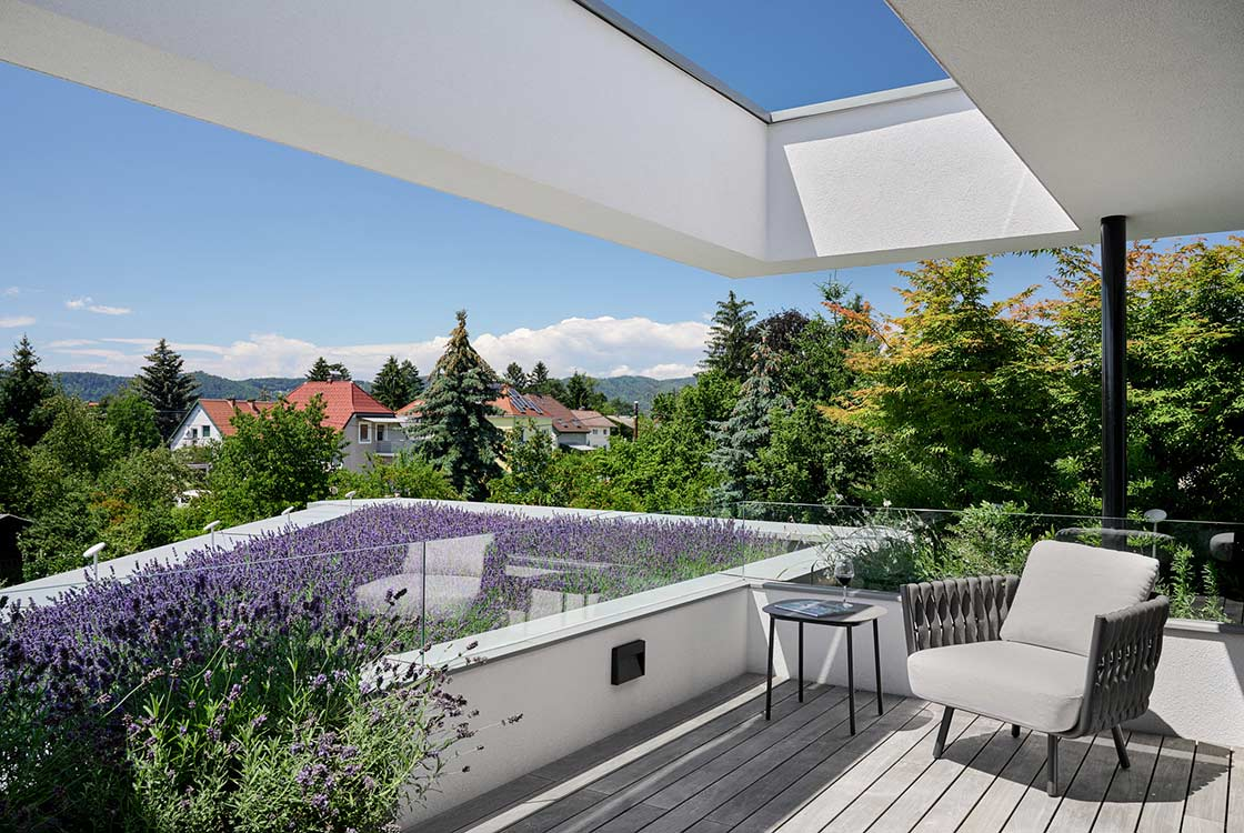 007_05_Dachbepflanzung