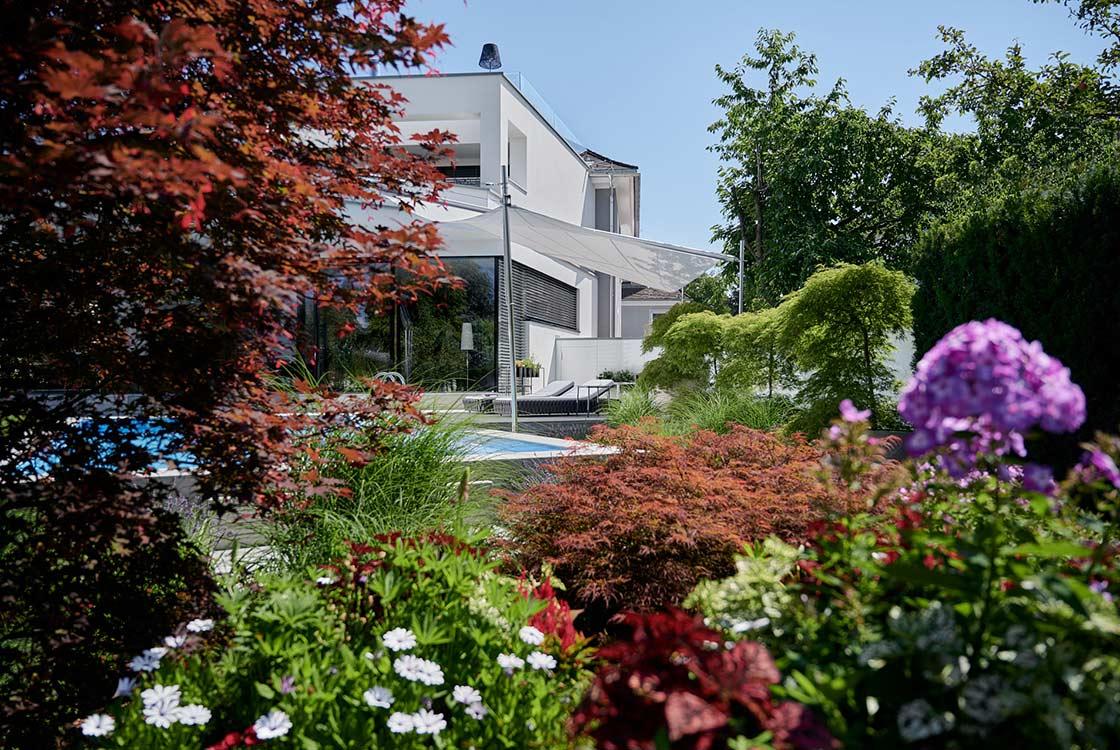 007_08_Villa-aus-Blumenbeet-von-rechts