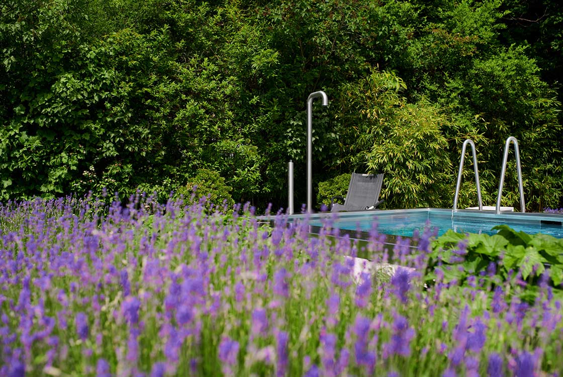 008_12_Lavendel-m-pool