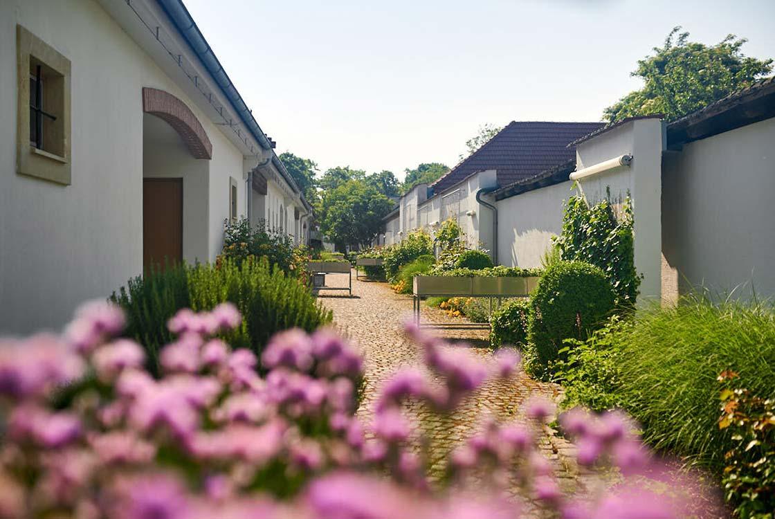 016_09_Garten-von-vorne-durch-Blumen